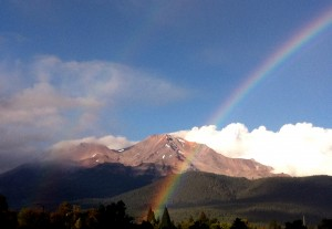 Shasta Rainbow